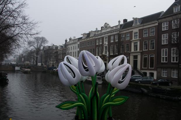 nl-16-316